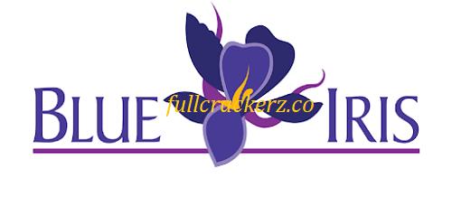 Blue Iris 5.4.9.18 2021 Full Version Crack Free Download